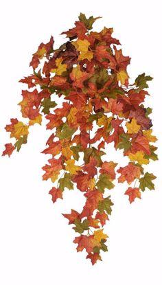 "Picture of Autumn Leaves Maple Bush Vine (9 Stems, 33"")"