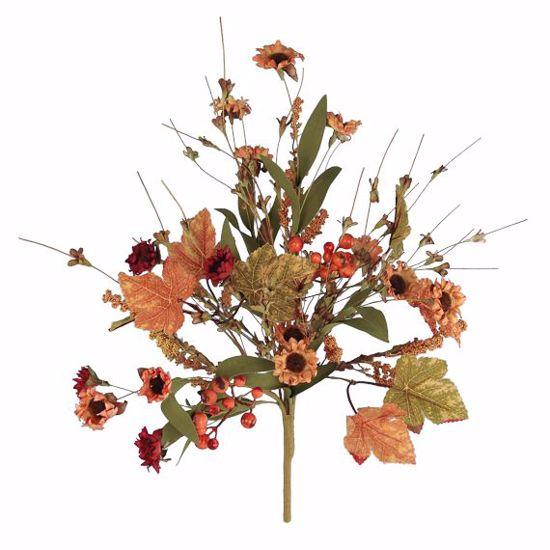 "Picture of Fall Theme Daisy Bush (20"")"