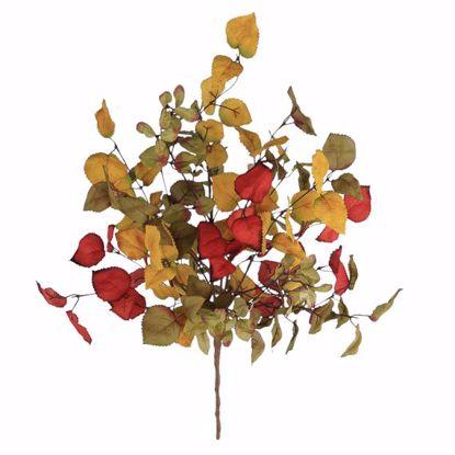 "Picture of Autumn Leaves Birch Bush (24"")"