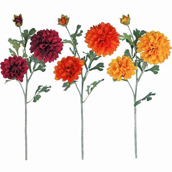 """Picture of Fall Colors Trumpet Dahlia Spray (26"""")"""