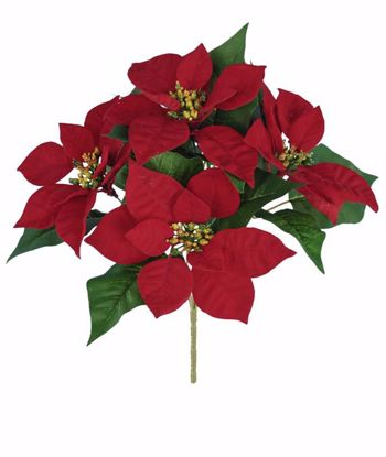 """Picture of Red Poinsettia Bush (12"""", 5 Stems)"""