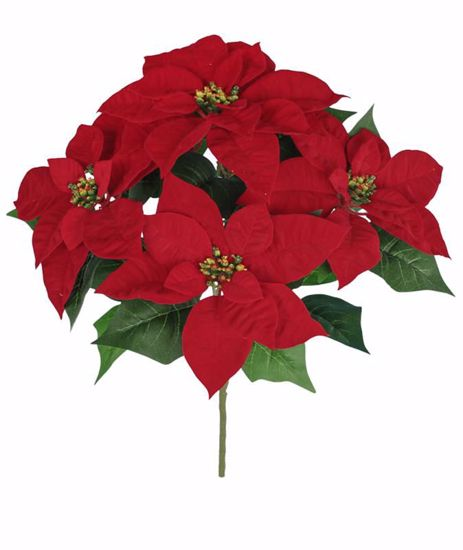 """Picture of Red Poinsettia Bush (18"""", 5 Stems)"""