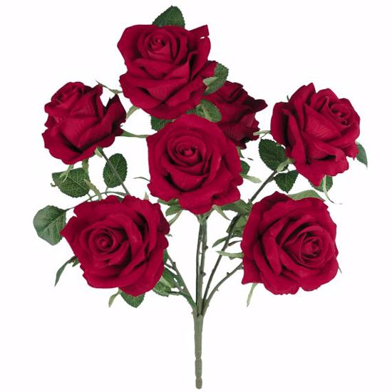 "Picture of 18"" Red Royal Rose Bush x 6"