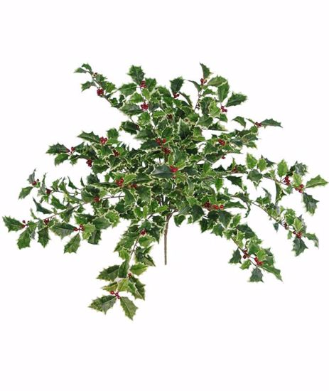 """Picture of Holly Bush-Real Touch with Berries (24"""")"""
