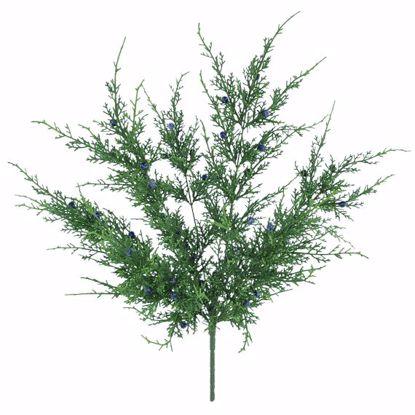 "Picture of Evergreen Bush- Juniper (7 Stems, 20"")"
