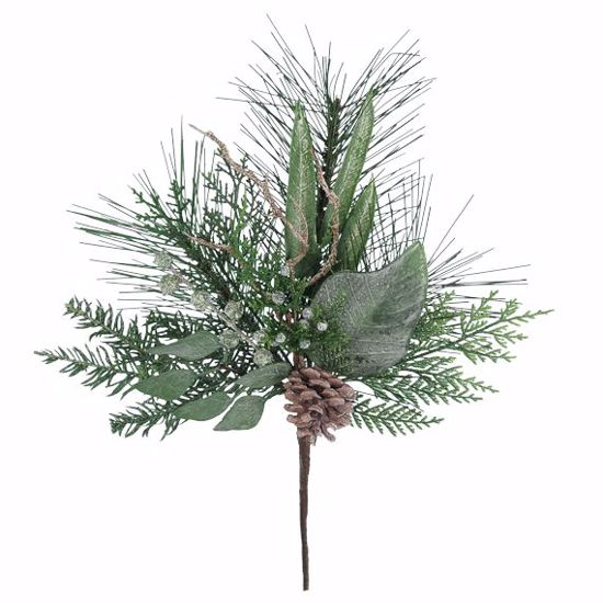 """Picture of Evergreen Spray-Pine with Mixed Leaves  (18"""")"""
