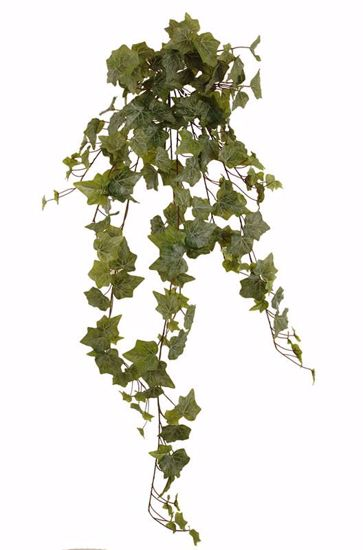 "Picture of 36"" Real Touch Ivy Indoor/Outdoor Stem x 14"