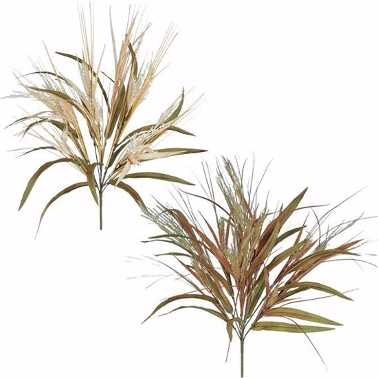 """Picture of Cream/Brown Wheat Grass Bush (2 Assorted, 10 Stems, 21"""")"""
