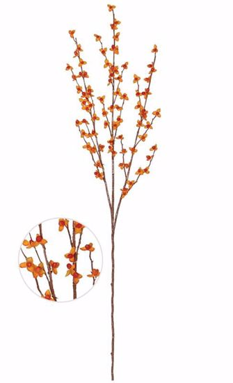 """Picture of Bittersweet  Branch with plastic leaves (33"""")"""