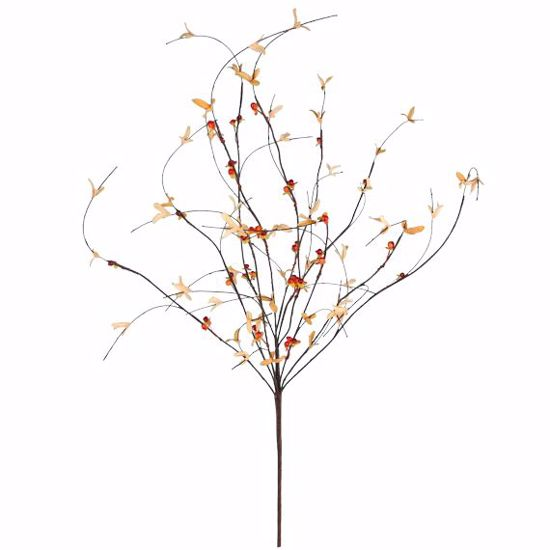 """Picture of Bittersweet  Branch (40"""")"""
