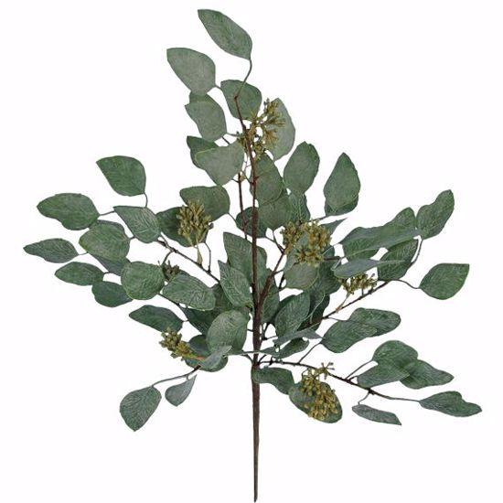 "Picture of 17"" Plastic Seeding Eucalyptus Bush"