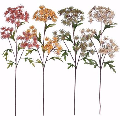 """Picture of Assorted Colors Dill Blossom Stems (26"""")"""