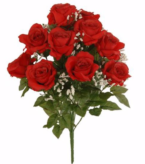 "Picture of 20"" Watertight Red Rose Bush x 14"