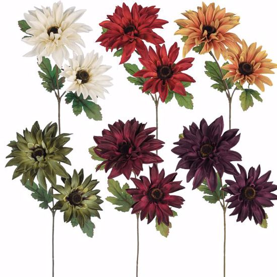 """Picture of Fall Colors Dahila  Stems (2 Stems, 15"""")"""