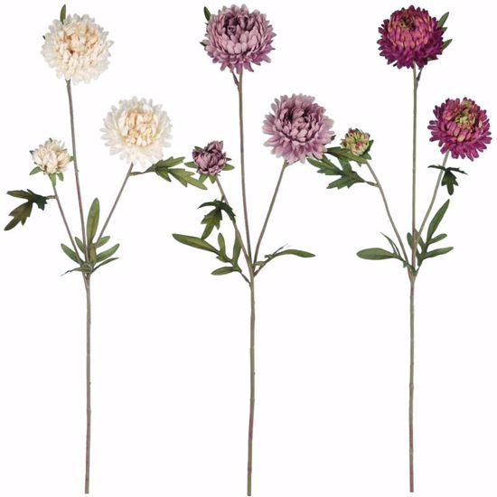 """Picture of Purple Ball Mum Stems-3 Assorted (27"""")"""