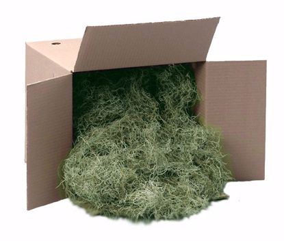 Picture of Spanish Moss - Green (3 lbs)