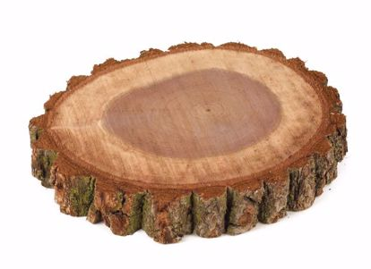 """Picture of 6""""-8"""" Wood Disc"""