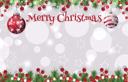 Picture of Merry Christmas Enclosure Card (PACK 50)