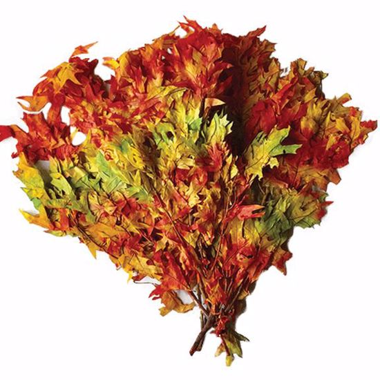 Picture of Transparent Oak Leaves