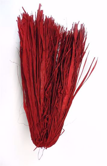 Picture of Raffia Red Trimmed