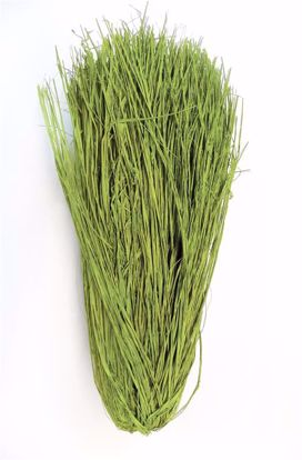 Picture of Raffia Green Trimmed