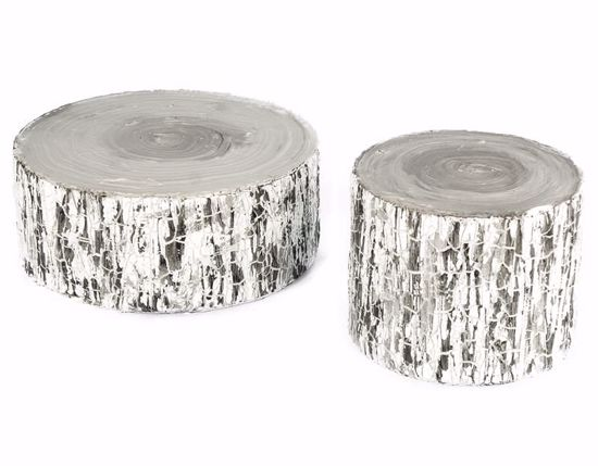 Picture of Birch Bark Trunk Set