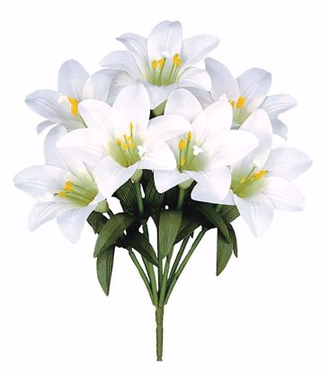"Picture of 15"" White Easter Lily Bush x7"