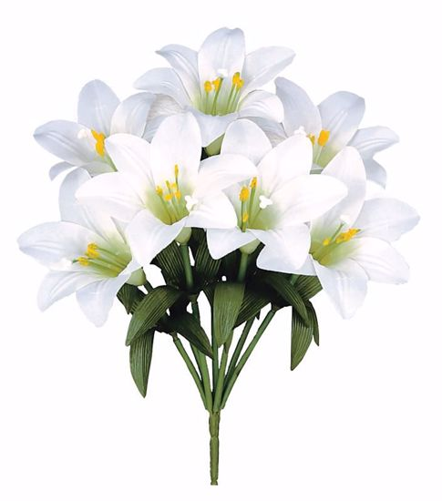 """Picture of 15"""" White Easter Lily Bush x7"""