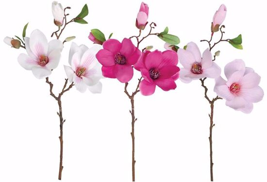 """Picture of 3 Assorted 19"""" Magnolia Spray"""