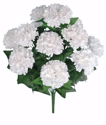 """Picture of 20"""" White Carnation Bush x 12"""
