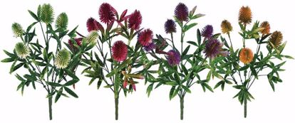 """Picture of Assorted Colors Thistle Bush (4 Assorted, 11"""")"""
