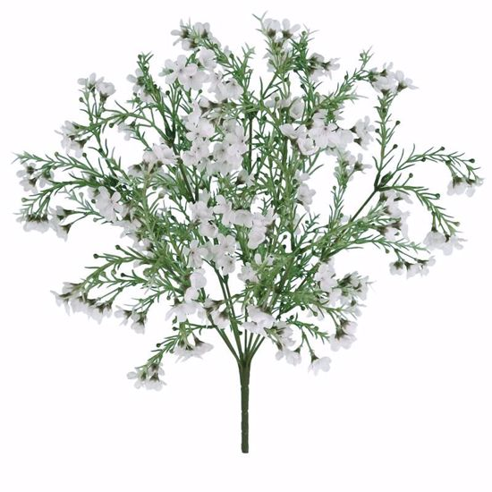 "Picture of 19"" White Wax Flower Bush-Plastic Leaves x9"