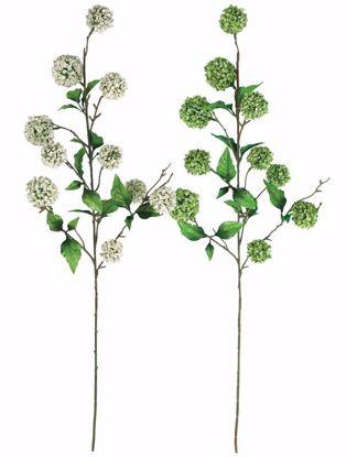 """Picture of Allium Spray (2 assorted, 34"""")"""