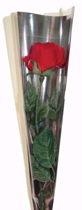 Picture of Single Clear Rose Sleeve with Mirrored Back 6 Inch Top