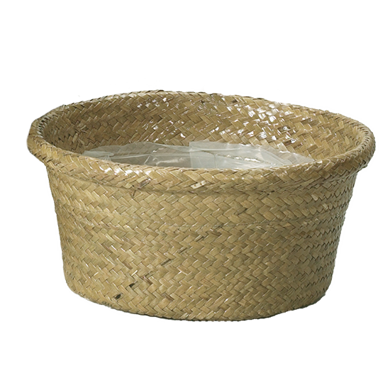 """Picture of 10"""" Natural Rolled Rim Palm Leaf Dish Garden"""