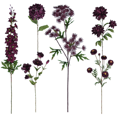 """Picture of Plum  Stem Assortment (Bouquet in a Box)  (24 Stems, 25"""")"""
