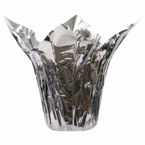 """Picture of 6"""" Kwik-Cover® Metallic Silver/Silver"""