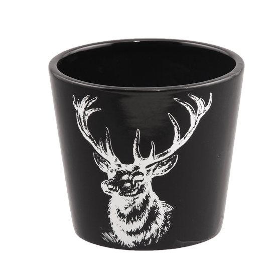 """Picture of Black dolomite pot with Stag 4.25"""""""