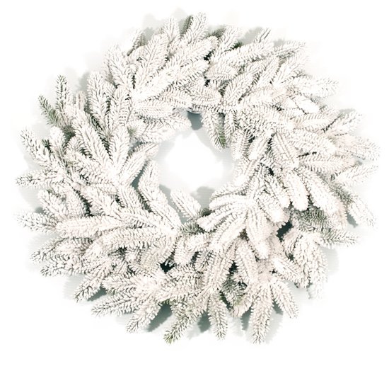 """Picture of Evergreen Wreath-Pine with Snow (24"""")"""