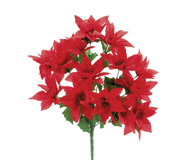 """Picture of Red Poinsettia Bush (17"""", 14 Stems)"""