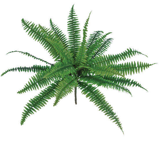 """Picture of Real Touch Boston Fern Bush (20"""" )"""