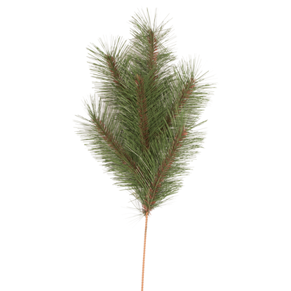 """Picture of Evergreen Spray-Needle Pine (6 Branches, 20"""")"""
