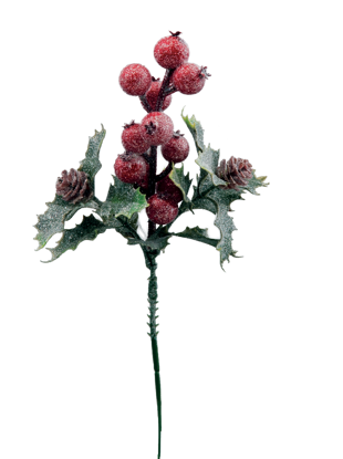 """Picture of Holiday Pick-Frosted Berry with Mini Pinecones (10"""")"""