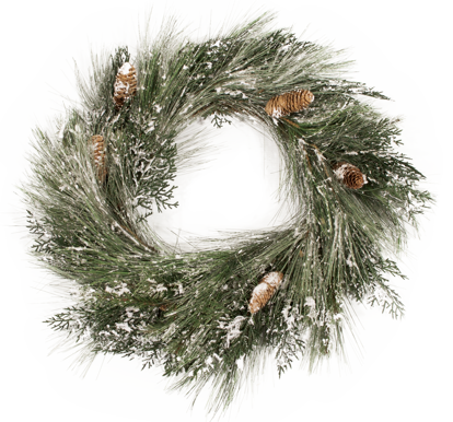 """Picture of Evergreen Wreath-Frosted Mixed Pine with Cedar Cones (Plastic, 24"""")"""