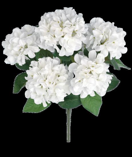 """Picture of White Hydrangea Bush (21"""", 7 Stems)"""
